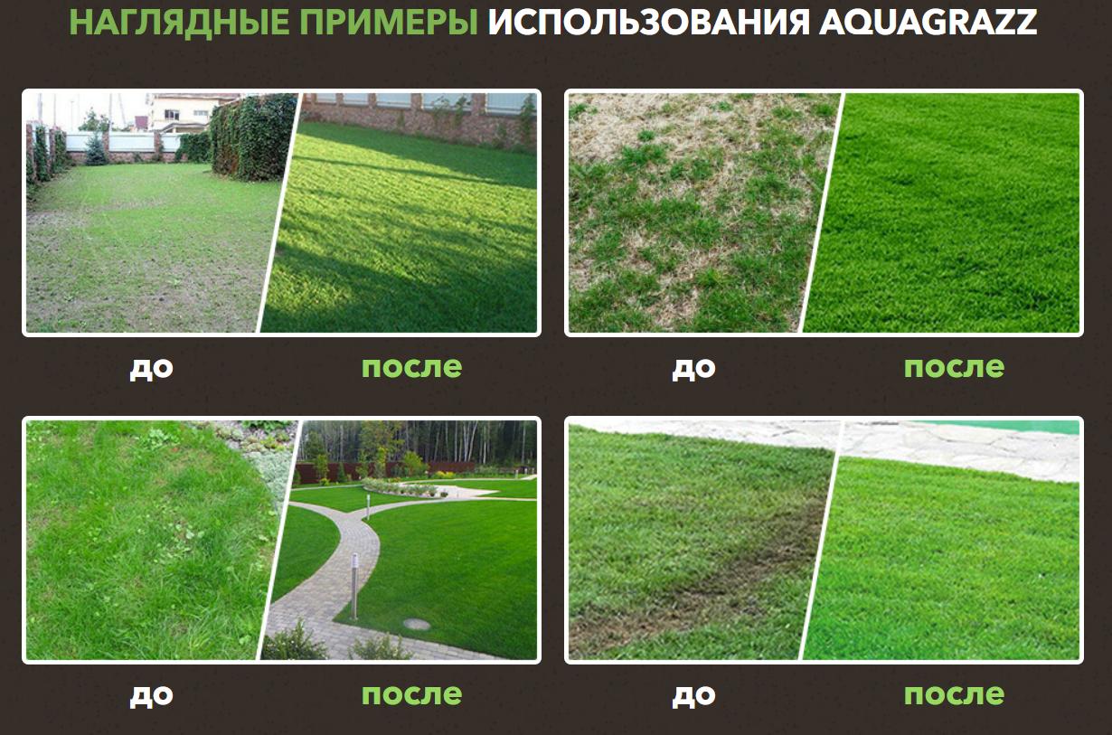 До и после жидкого газона AquaGrazz