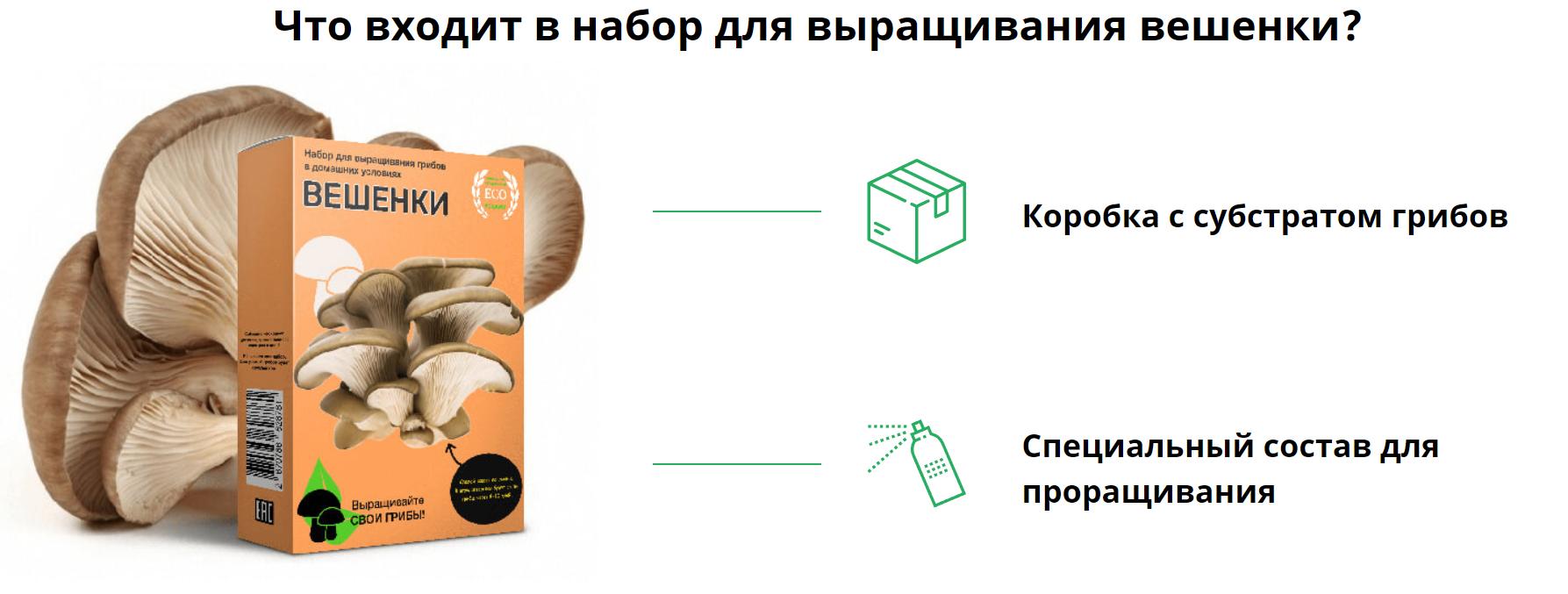 Набор домашней грибнице вешенки