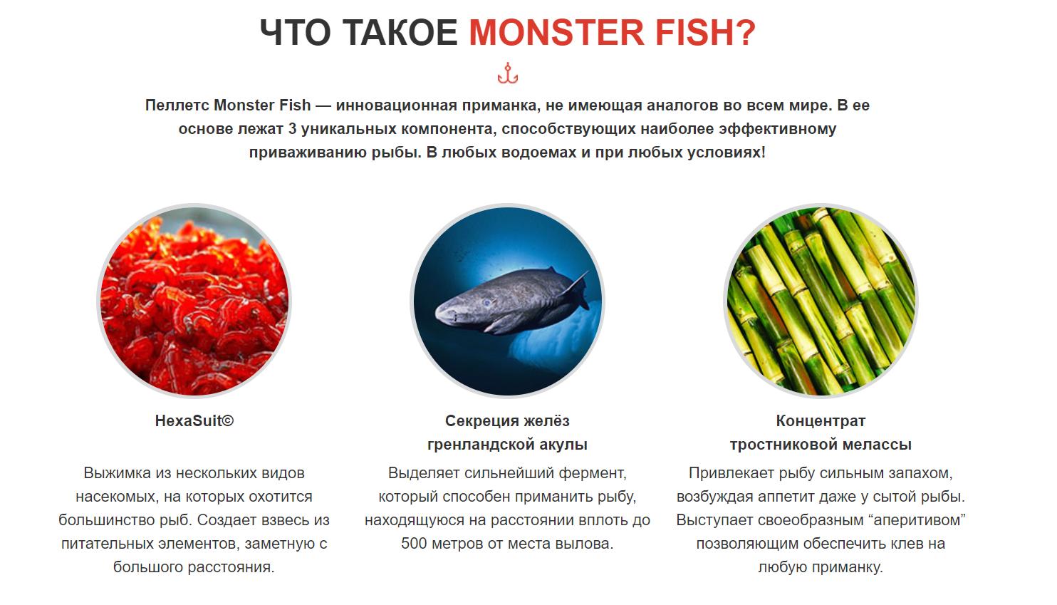 Что это - приманка для ловли рыбы Monster Fish